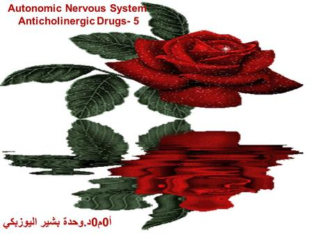 Autonomic Nervous System Anticholinergic Drugs- 5 أ0م0د.وحدة بشير اليوزبكي.