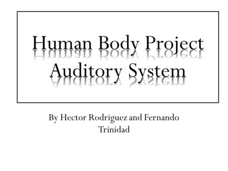 By Hector Rodriguez and Fernando Trinidad. Structure of the Auditory System In the human body, the system is responsible for taking in sound from the.