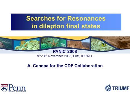 Searches for Resonances in dilepton final states Searches for Resonances in dilepton final states PANIC 2008 9 th -14 th November 2008, Eilat, ISRAEL A.