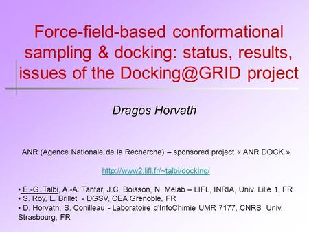 Force-field-based conformational sampling & docking: status, results, issues of the project Dragos Horvath ANR (Agence Nationale de la Recherche)