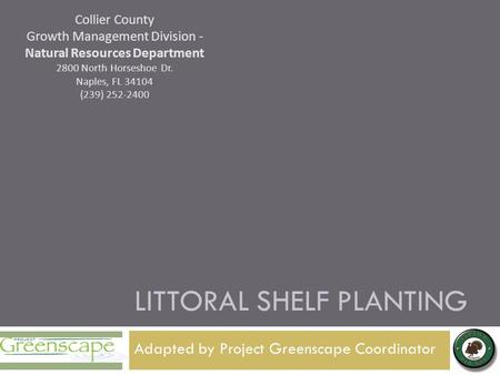 Adapted by Project Greenscape Coordinator LITTORAL SHELF PLANTING Collier County Growth Management Division - Natural Resources Department 2800 North Horseshoe.