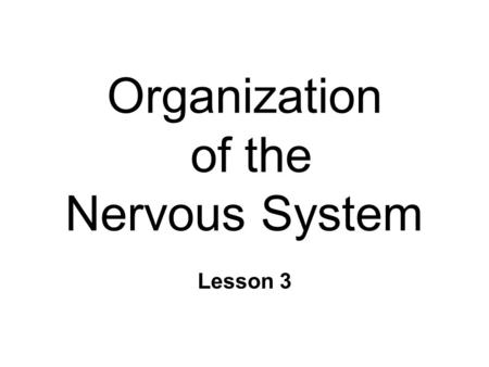 Organization of the Nervous System Lesson 3. The Central Nervous System n CNS l Brain l Spinal cord ~