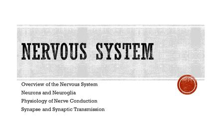 Overview of the Nervous System Neurons and Neuroglia Physiology of Nerve Conduction Synapse and Synaptic Transmission.