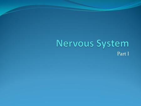 Part I. Main Divisions 1. Central Nervous System - brain and spinal cord 2. Peripheral Nervous System - outside of central a. Sensory (afferent) b. Motor.