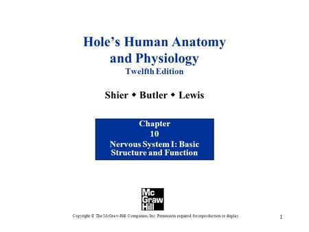 1 Hole's Human Anatomy and Physiology Twelfth Edition Shier  Butler  Lewis Chapter 10 Nervous System I: Basic Structure and Function Copyright © The.