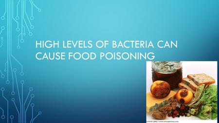 HIGH LEVELS OF BACTERIA CAN CAUSE FOOD POISONING.