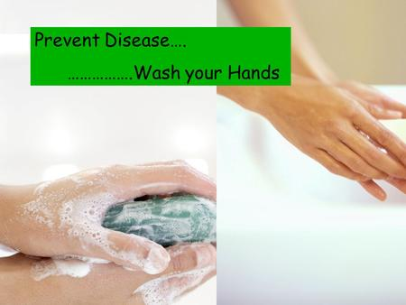 Prevent Disease…. …………….Wash your Hands. The Most common mode of transmission of pathogens is from your hands!