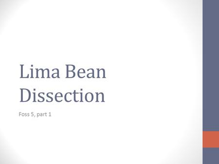 Lima Bean Dissection Foss 5, part 1