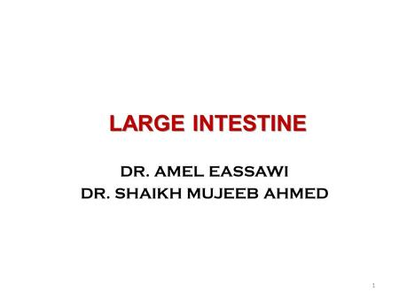 DR. AMEL EASSAWI Dr. Shaikh Mujeeb Ahmed