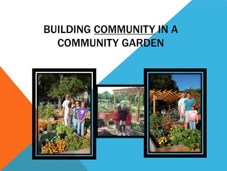 BUILDING COMMUNITY IN A COMMUNITY GARDEN.  New member information packet; same basic information is sent/given to each  Garden rules/guidelines: read.
