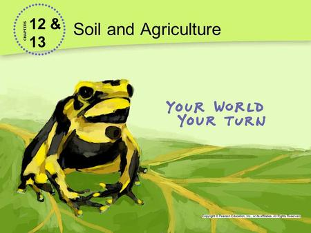 12 & 13 Soil and Agriculture CHAPTERS. Lesson 12.1 Soil About 38% of Earth's land surface is used for agriculture.