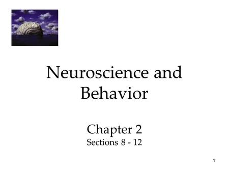 1 Neuroscience and Behavior Chapter 2 Sections 8 - 12.