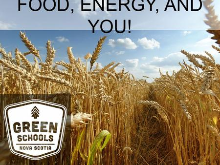 FOOD, ENERGY, AND YOU!. FOOD Gives us energy! Our bodies use the chemical energy in food to carry out activities and live our lives Just as cars don't.