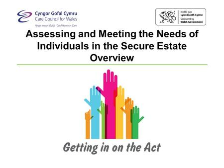 Assessing and Meeting the Needs of Individuals in the Secure Estate Overview.