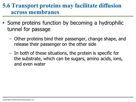 5.6 Transport proteins may facilitate diffusion across membranes  Some proteins function by becoming a hydrophilic tunnel for passage –Other proteins.