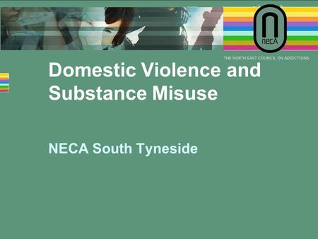Domestic Violence and Substance Misuse NECA South Tyneside.