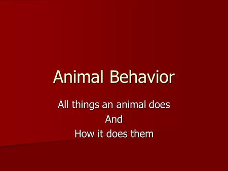 Animal Behavior All things an animal does And How it does them.