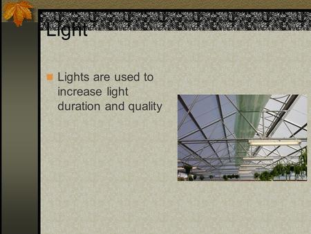 Light Lights are used to increase light duration and quality.