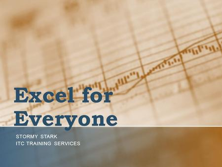 Excel for Everyone STORMY STARK ITC TRAINING SERVICES.