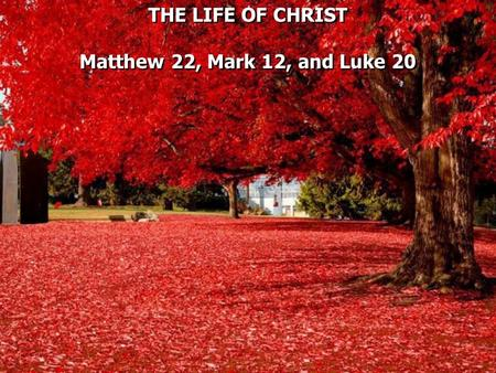 THE LIFE OF CHRIST Matthew 22, Mark 12, and Luke 20 THE LIFE OF CHRIST Matthew 22, Mark 12, and Luke 20.