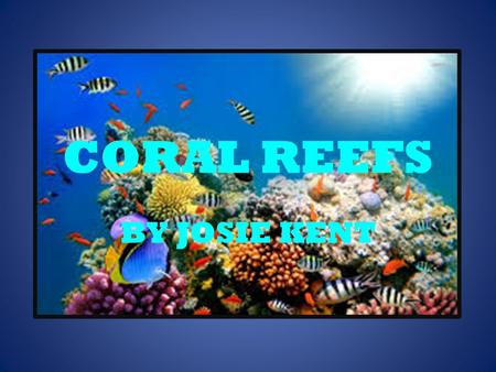 CORAL REEFS BY JOSIE KENT WHAT ARE CORAL REEFS? Coral reefs are rocky mounds and/or ridges formed in the sea by living things through the collection.