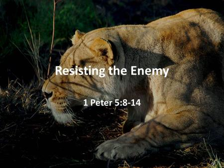 Resisting the Enemy 1 Peter 5:8-14. Resisting the Enemy For our struggle is not against flesh and blood, but against the rulers, against the powers, against.
