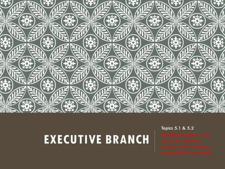 EXECUTIVE BRANCH Topics 5.1 & 5.2 Guiding Question: Does the current electoral process result in the best candidates for president?
