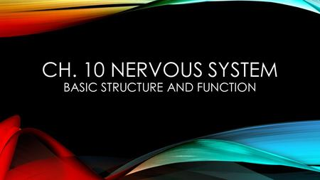 Ch. 10 Nervous System basic Structure and Function