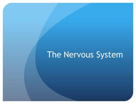 The Nervous System. Functions of the Nervous System Respond to internal and external stimuli Transmit nerve impulses to and away from CNS Interpret nerve.