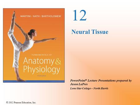 © 2012 Pearson Education, Inc. PowerPoint ® Lecture Presentations prepared by Jason LaPres Lone Star College—North Harris 12 Neural Tissue.