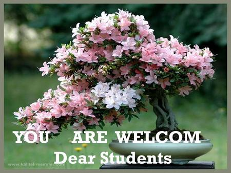 YOU ARE WELCOM Dear Students. Swapan Kumar Sarker Class: Eleven Lecturer in English Unite: Twelve C.J. Islamia Alim Madrasha Lessson:Six Singair, Manikganj,