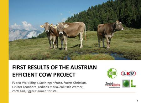 1 FIRST RESULTS OF THE AUSTRIAN EFFICIENT COW PROJECT Fuerst-Waltl Birgit, Steininger Franz, Fuerst Christian, Gruber Leonhard, Ledinek Maria, Zollitsch.