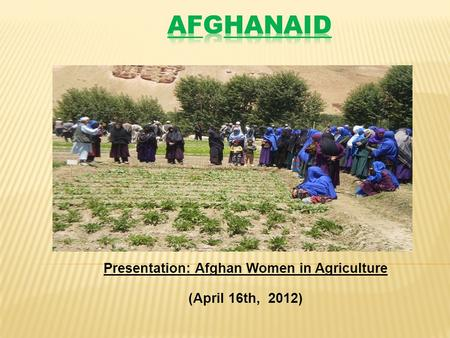 Presentation: Afghan Women in Agriculture (April 16th, 2012)
