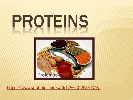 Https://www.youtube.com/watch?v=q02BxrLGTAg. Proteins are:  Very huge molecules.  Are the union of smaller molecules called amino- acids.  There are.