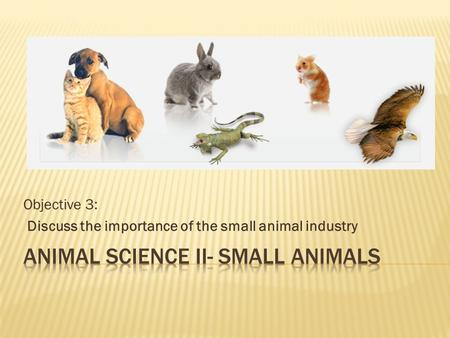 Objective 3: Discuss the importance of the small animal industry.