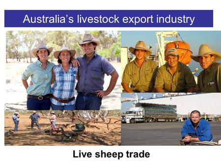 Australia's livestock export industry Live sheep trade.