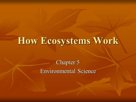 How Ecosystems Work Chapter 5 Environmental Science.