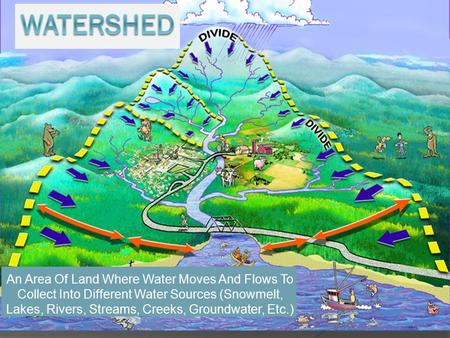 An Area Of Land Where Water Moves And Flows To Collect Into Different Water Sources (Snowmelt, Lakes, Rivers, Streams, Creeks, Groundwater, Etc.)