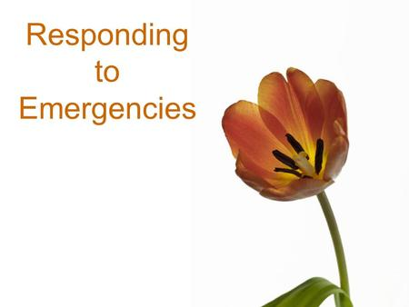 Responding to Emergencies. Free template from www.brainybetty.com2 Responding to Emergencies 1.CHECK –Is the scene safe? –What happened? –How many involved?