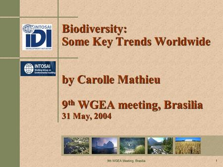 9th WGEA Meeting, Brasilia1 Biodiversity: Some Key Trends Worldwide by Carolle Mathieu 9 th WGEA meeting, Brasilia 31 May, 2004.