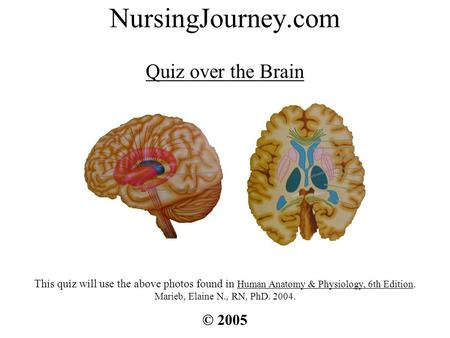 NursingJourney.com Quiz over the Brain © 2005 This quiz will use the above photos found in Human Anatomy & Physiology, 6th Edition. Marieb, Elaine N.,