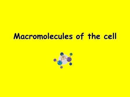 Macromolecules of the cell. Macromolecules are built of repeating Units Macromolecules are all Polymers: large molecule formed when many smaller, but.