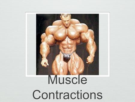 Muscle Contractions. Muscles pull on tendon fibers Pull=Tension Tension is an active force Energy must be applied to produce an active force Applied tension.