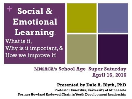 + MNSACA's School Age Super Saturday April 16, 2016 Presented by Dale A. Blyth, PhD Professor Emeritus, University of Minnesota Former Howland Endowed.