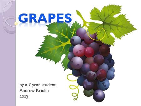 By a 7 year student Andrew Kriulin 2013. A grape is a fruiting berry of the deciduous woody vines.