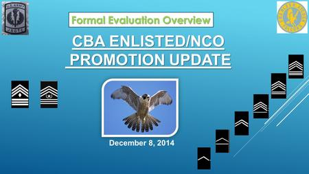 CBA ENLISTED/NCO PROMOTION UPDATE December 8, 2014 Formal Evaluation Overview.