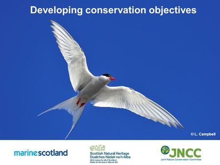 Developing conservation objectives © L. Campbell.