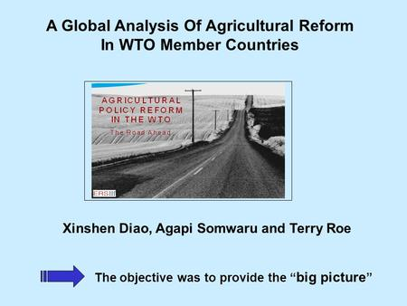 "Xinshen Diao, Agapi Somwaru and Terry Roe The objective was to provide the "" big picture "" A Global Analysis Of Agricultural Reform In WTO Member Countries."