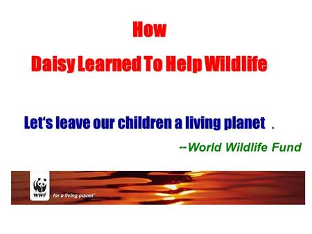 How Daisy Learned To Help Wildlife Let's leave our children a living planet . -- -- World Wildlife Fund.