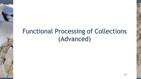 Functional Processing of Collections (Advanced) 6.0.